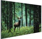 Edelhert in het bos Aluminium 30x20 cm - Foto print op Aluminium (metaal wanddecoratie)