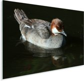 Nonnetje in de schaduw Plexiglas 40x30 cm - klein - Foto print op Glas (Plexiglas wanddecoratie)