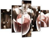 Glasschilderij Tulp | Bruin, Grijs | 100x70cm 5Luik | Foto print op Glas |  F005150