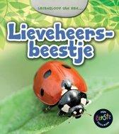 Het leven van een... - Lieveheersbeestje