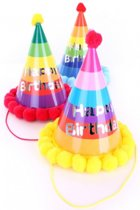 Groot feestelijke verjaardagshoedje voor volwassenen