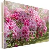 Zomerse kleuren van de hortensia Vurenhout met planken 60x40 cm - Foto print op Hout (Wanddecoratie)