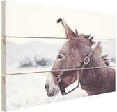 Ezel in de sneeuw Hout 80x60 cm - Foto print op Hout (Wanddecoratie)