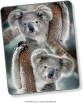 Elegante Plaid Plaid Koala 130x160 - Prachtige Design - Heerlijk Zacht