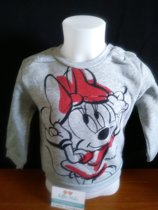 Minnie Mouse sweater grijs maat 68/74