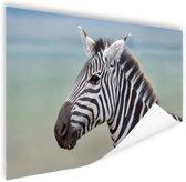 Zebra portret  Poster 60x40 cm - Foto print op Poster (wanddecoratie woonkamer / slaapkamer) / Dieren Poster