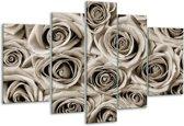 Glas schilderij Bloemen, Roos | sepia | 170x100cm 5Luik | Foto print op Glas |  F006798