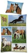 Wild Life dekbedovertrek Multi Junior (120x150 cm + 1 sloop) (horses)