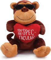 Pluchen valentijn aapje 'You are spectacular