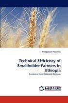 Technical Efficiency of Smallholder Farmers in Ethiopia