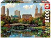 Educa puzzel New York