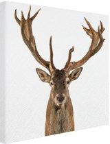 FotoCadeau.nl - Close-up van een edelhert  Canvas 120x80 cm - Foto print op Canvas schilderij (Wanddecoratie)