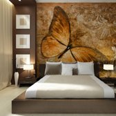 Fotobehang - Vlinder in het bruin , beige