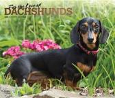 Dachshunds, for the Love of 2020 Deluxe Foil