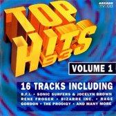 Top Hits Vol 1