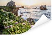 Bloemen op rotsen bij de Big Sur in Amerika Poster 60x40 cm - Foto print op Poster (wanddecoratie woonkamer / slaapkamer)