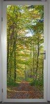 Deurposter 'Herfstbos' - deursticker 75x195 cm