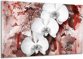 Canvas schilderij Orchidee   Wit, Rood   120x70cm 1Luik