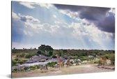 Zonnestralen boven het Masai Mara National Park in Kenia Aluminium 90x60 cm - Foto print op Aluminium (metaal wanddecoratie)