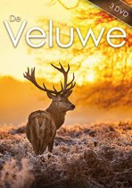 Special Interest - De Veluwe