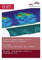 Simulation und experimentelle Untersuchung eines elektromechanischen Enteisungssystems