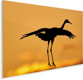 Saruskraan bij zonsondergang Plexiglas 30x20 cm - klein - Foto print op Glas (Plexiglas wanddecoratie)