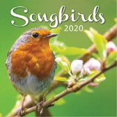 Kalender 2020 Songbirds (30.5 x 30.5)