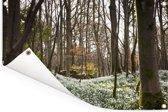 Heuveltjes vol met sneeuwklokjes Tuinposter 90x60 cm - Tuindoek / Buitencanvas / Schilderijen voor buiten (tuin decoratie)