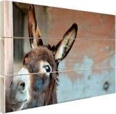 Ezel Hout 80x60 cm - Foto print op Hout (Wanddecoratie)