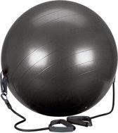 Avento Fitness/Gymbal met Elastieken - Zwart/Grijs - 65