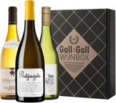 Gall & Gall Wijnbox Big White 2019 - 3 x 75 cl