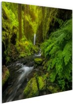 Prachtig plaatje jungle Glas 30x20 cm - klein - Foto print op Glas (Plexiglas wanddecoratie)