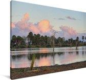 Het wildreservaat Selous bij het meer van Tagalala in Afrika Canvas 140x90 cm - Foto print op Canvas schilderij (Wanddecoratie woonkamer / slaapkamer)