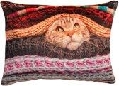 Sierkussen Kat - 60 x 40 cm - heerlijk zacht fluweel - Kussen met ritssluiting incl. polyester vulling  - kattenprint / poes - katje