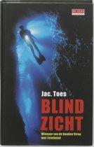 Blind zicht