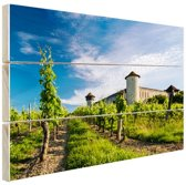 Wijngaard in Bordeaux Frankrijk Hout 60x40 cm - Foto print op Hout (Wanddecoratie)
