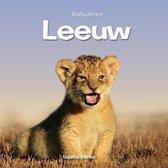 Babydieren - Leeuw
