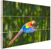 Vliegende ara  Hout 30x20 cm - klein - Foto print op Hout (Wanddecoratie)