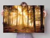 Herfstbos met zonnestralen.  - Poster 91.5 x 61 cm