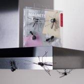 Kikkerland Insect magneten (set van 4)