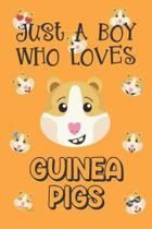 Just A Boy Who Loves Guinea Pigs: Guinea Pig Gifts: Novelty Gag Notebook Gift: Lined Paper Paperback Journal Book