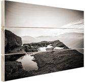 Natuurfoto zwart-wit Hout 60x40 cm - Foto print op Hout (Wanddecoratie)