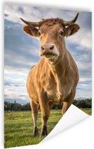Lichtbruine koe Poster 40x60 cm - Foto print op Poster (wanddecoratie woonkamer / slaapkamer) / Dieren Poster