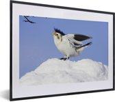 Foto in lijst - Een sneeuwgors stijgt op vanaf de sneeuw fotolijst zwart met witte passe-partout klein 40x30 cm - Poster in lijst (Wanddecoratie woonkamer / slaapkamer)