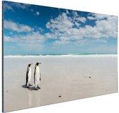 Koningspinguins op het strand Aluminium 180x120 - XXL cm - Foto print op Aluminium (metaal wanddecoratie)