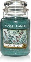 Yankee Candle Large Jar Eucalyptus