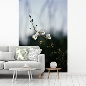 Fotobehang vinyl - Een pijlkruid met een vervaagde achtergrond breedte 260 cm x hoogte 400 cm - Foto print op behang (in 7 formaten beschikbaar)