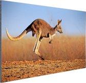 Actiefoto van kangoeroe Aluminium 90x60 cm - Foto print op Aluminium (metaal wanddecoratie)