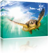 Sound Art - Canvas + Bluetooth Speaker Turtle In The Sea (23 x 28cm)