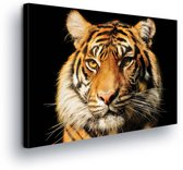 Tiger Canvas Print 100cm x 75cm